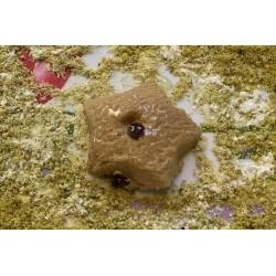 Biscuits aux pépites de...